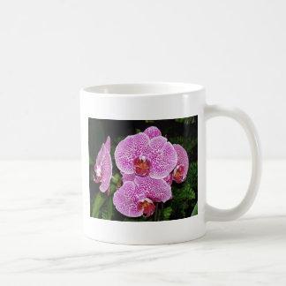 Paarse en Witte Orchidee Koffiemok