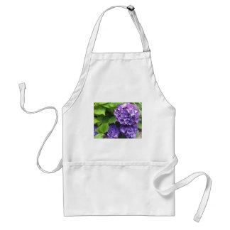 Paarse Hydrangea hortensia Standaard Schort