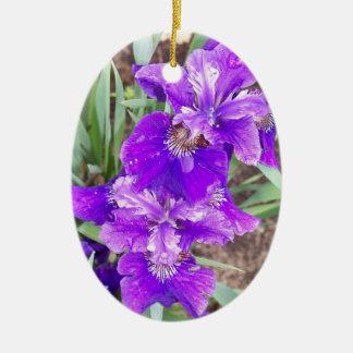 Paarse Iris met het Ornament van de Druppeltjes
