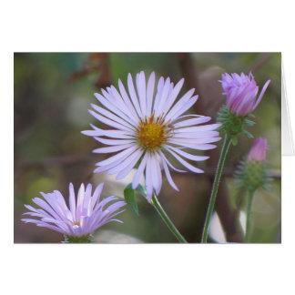 Paarse Kaart Wildflowers