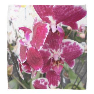 Paarse Orchideeën Bandana