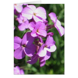 Paarse Spatie Wildflowers Briefkaarten 0