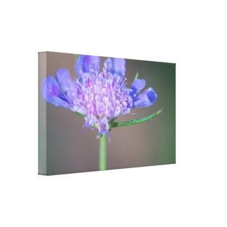 Paarse wilde bloem canvas afdrukken