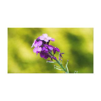 Paarse wildflowers canvas afdruk
