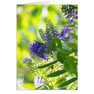 Paarse Wildflowers, dankt u Kaart