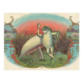 Pad en Paddestoel Briefkaart