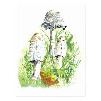 Paddestoelen in Natuur - het Art. van de Kleur van Briefkaart