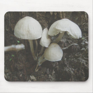 Paddestoelen in Stomp Mousepad Muismat