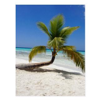palm briefkaart