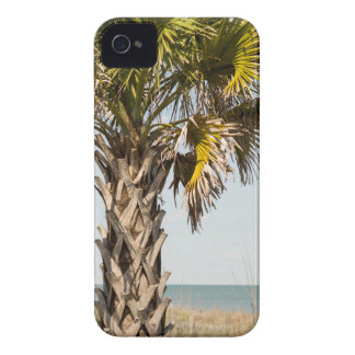 Palmen op de Promenade van de Kust van het Oosten iPhone 4 Hoesje