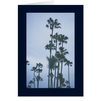 Palmen van het Lied van de Zomer van Sol. Het Kaart