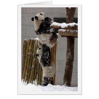 panda lift kaart