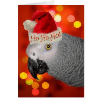 Papegaai van de Kerstman van Kerstmis de Wenskaart