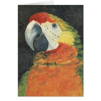 papegaaien kaart