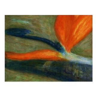 Paradijsvogel, Briefkaart