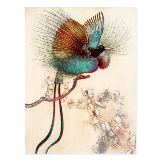 Paradijsvogel En Feeën Briefkaart