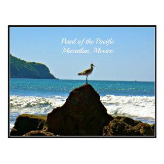 Parel van de Stille Oceaan, de Kaart van de