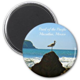 Parel van de Vreedzame Vogel van Mazatlan Mexico Magneet
