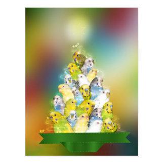 Parkiet Kerstboom Briefkaart