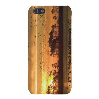 Pas uw telefoonhoesje aan iPhone 5 hoesje
