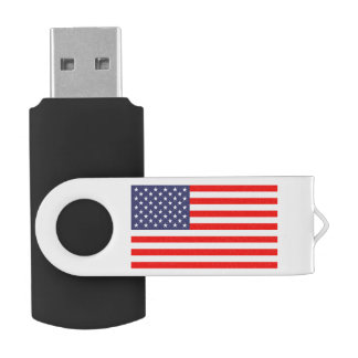 Patriottische Amerikaanse de flitsaandrijving van USB Stick