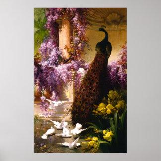 Pauw en Duiven in een Tuin Poster