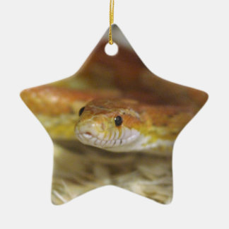 PB de slang Keramisch Ster Ornament
