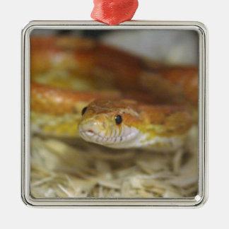 PB de slang Zilverkleurig Vierkant Ornament