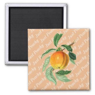Peachy enkel Fruit van de Perzik Magneet