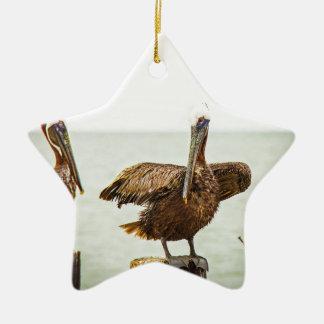 Pelikanen die op posten worden neergestreken keramisch ster ornament