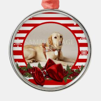 PERSONALISEERT de herdenkingsfoto van het huisdier Zilverkleurig Rond Ornament