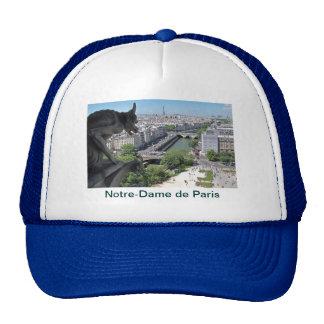 Pet: Notre-Dame de Paris - Gargouille Pet