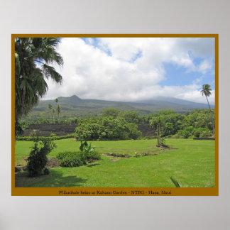 Pi'ilanihale Heiau bij de Tuin Kahanu - Maui Poster