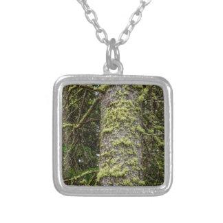 Pine_Tree_Moss Zilver Vergulden Ketting
