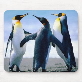 Pinguïnen: Kleurrijke Pinguïn Mousepad of het Stoo Muismatten