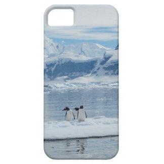 Pinguïnen op een ijsberg barely there iPhone 5 hoesje