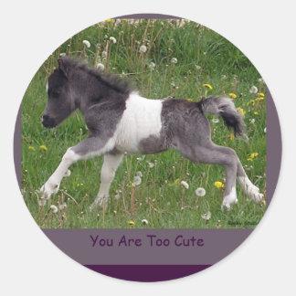 Pinto van het baby de MiniStickers van het Paard Ronde Sticker
