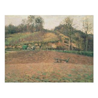 Ploughland, 1874 briefkaart