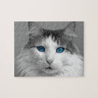 Pluizige Grijze en Witte blauw-Eyed Kat Puzzel
