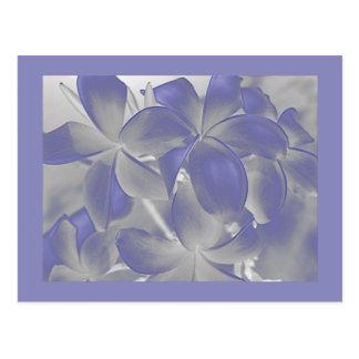 Plumeria stelt Blauw en Grijs Briefkaart in de