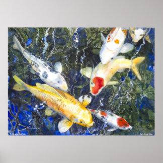 PMACarlson Koi, Diep Blauw Poster