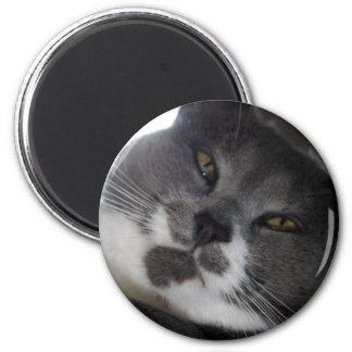 Poe 2 magneet