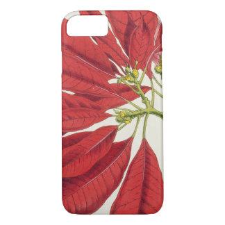 Poinsettia Pulcherrima (kleurenlitho) iPhone 7 Hoesje