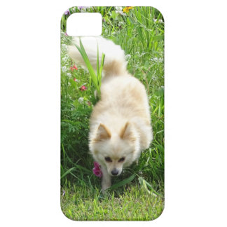 Pomeranian Barely There iPhone 5 Hoesje