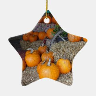 Pompoenen op Stro Keramisch Ster Ornament