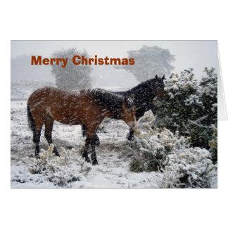 Poney-in-sneeuwstorm Kerstkaart Briefkaarten 0
