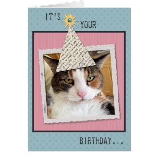 Pookie het Wenskaart van de Verjaardag van de Kat