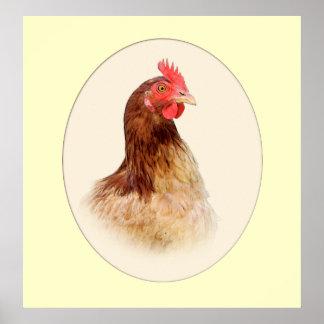 Portret van een Bruine Druk van de Kip Poster