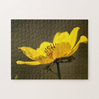 Portret van een Gele Puzzel van de Aster Puzzel