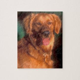 Portret van een golden retriever puzzel